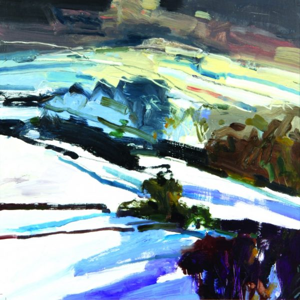 Peter Iden south downs in winter