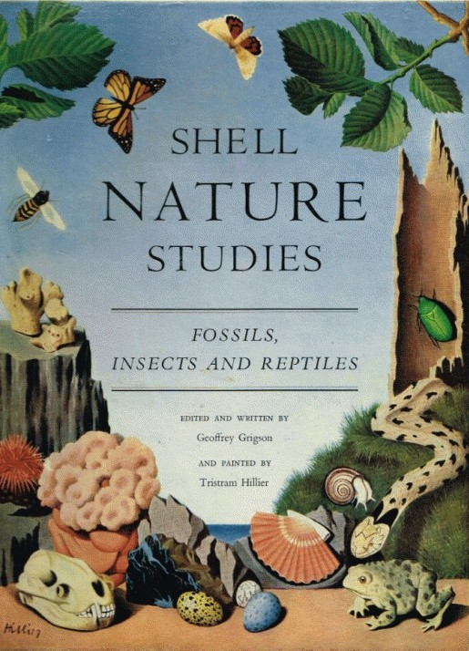 Shell Nature Studies; Fossils, Insects and Reptiles