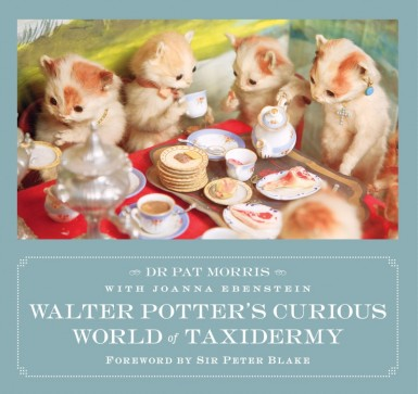 walter potters curious world of taxidermy