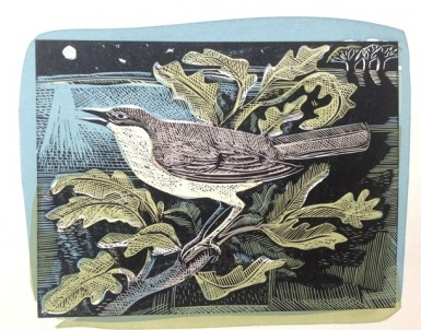 angela harding nightingale print