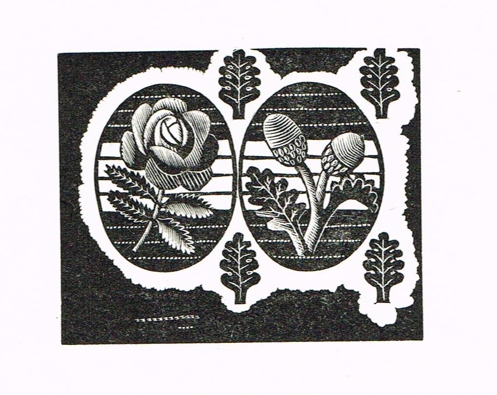 rose and acorns eric ravilious engraving