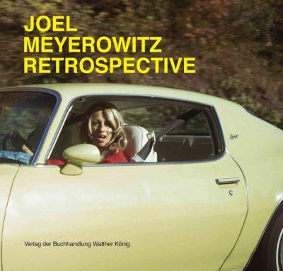 joel meyerowitz retrospective