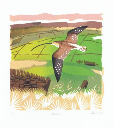 Curlew Print by Carry Akroyd