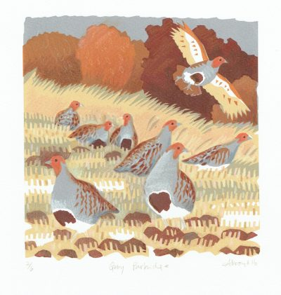 Grey Partridges Print by Carry Akroyd