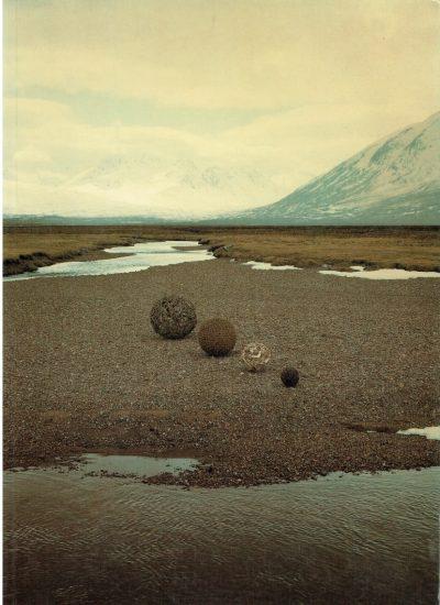 The Unpainted Landscape