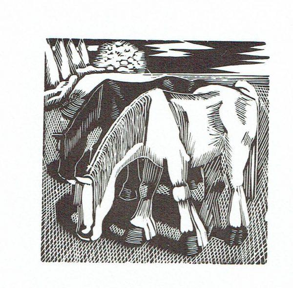 Horses Grazing 3