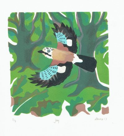 Jay Print by Carry Akroyd