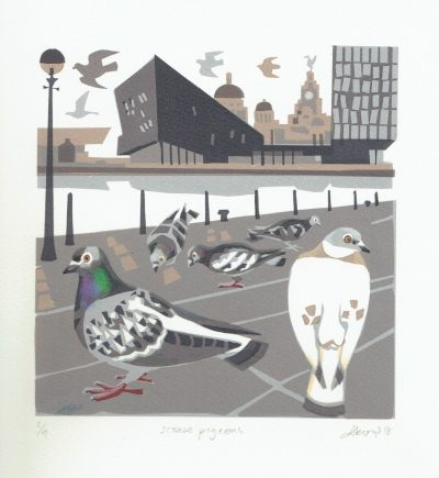 Scouse Pigeons Print by Carry Akroyd