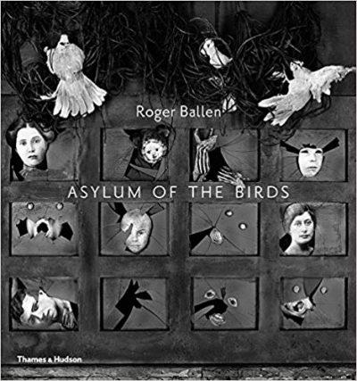 asylum of birds