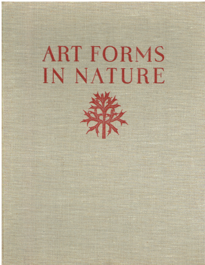 Art Forms in Nature. Examples from the Plant World Photographed Direct from Nature. 96 Plates