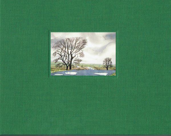 Hockney My Yorkshire