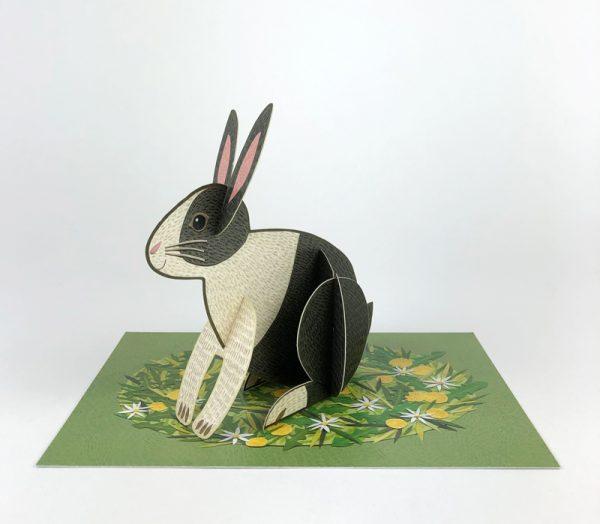 alice melvin rabbit