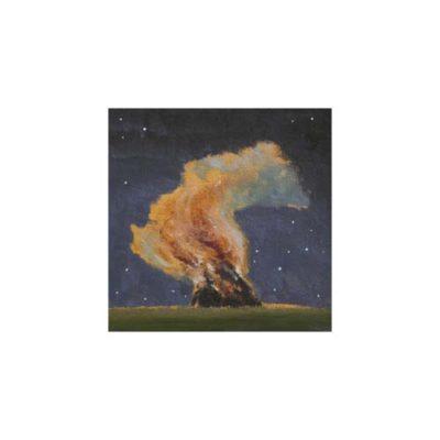 bonfire and stars by david inshaw